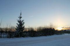 Krajobraz, jaki może dać zima D. Kaczyńska Staniewice (3).JPG
