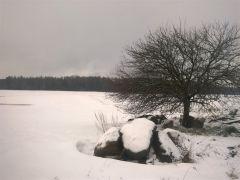 Samotnie wśrodku zimy J. Spocińska Postomino.jpg