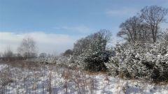 Zimowe widoki J. Czapla Postomino.jpg